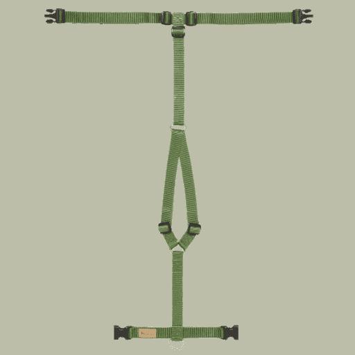 Haqihana tuigje in kleur groen