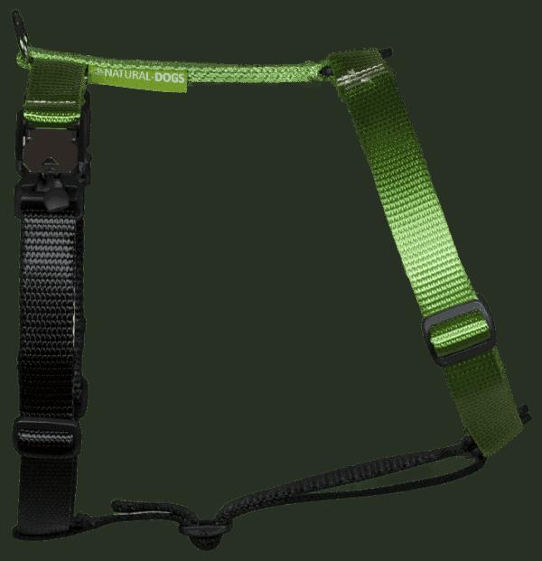 Duo-color tuigje limoen-zwart