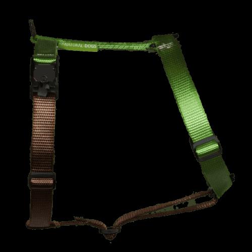 Duo-color tuigje limoen-bruin