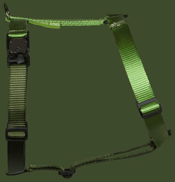 Duo-color tuigje limoen-legergroen