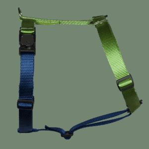 Duo-color tuigje limoen-marineblauw