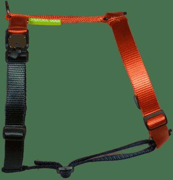 Duo-color tuigje roestoranje-zwart