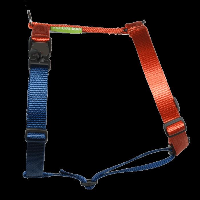 Duo-color tuigje roestoranje-marineblauw