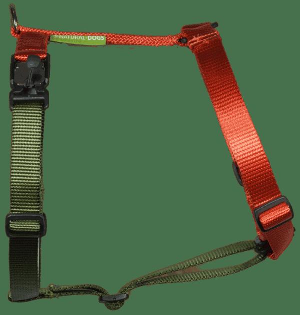 Duo-color tuigje roestoranje-legergroen
