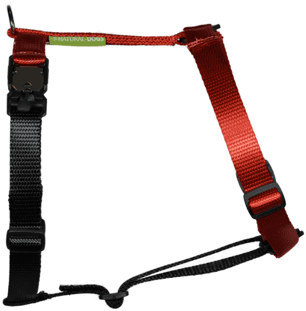 Duo-color tuigje rood-zwart