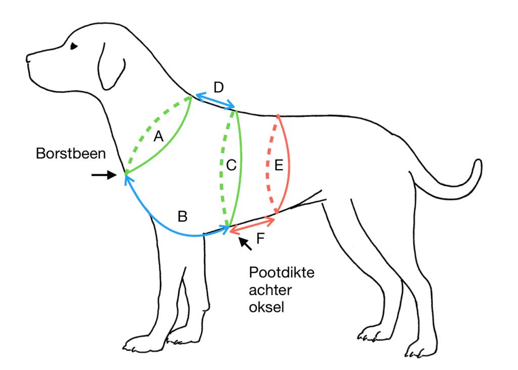 Hoe meet ik mijn hond op?